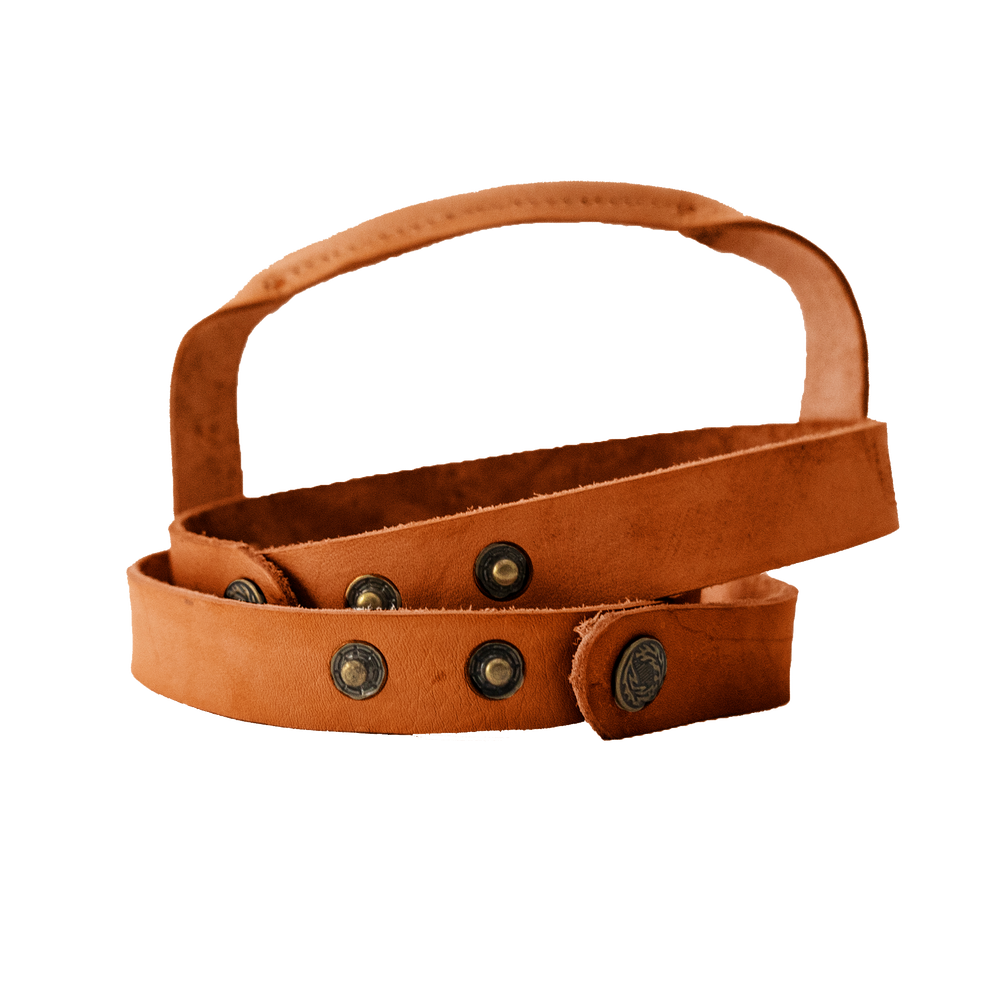 Leather Carrier