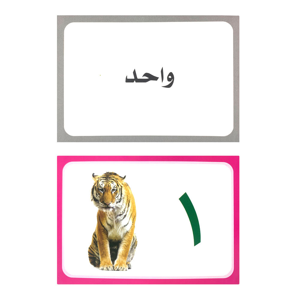 Arabic Numbers & Geometric shapes Flash Card
