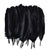 Large Black Feathers, 20 feathers
