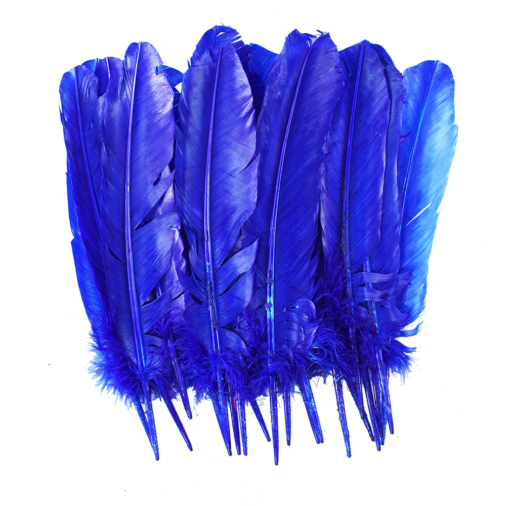 Large Blue Feathers, 20 feather