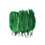 Small Assorted Colors Feathers, Green 20 feathers