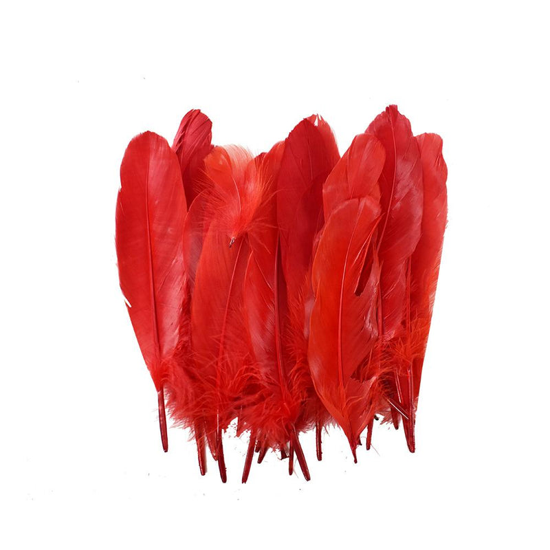 Small Assorted Colors Feathers, Red - 20 feathers