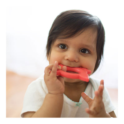 "Dr Brown's ""Flexees"" Friends Fox Teether - Red"