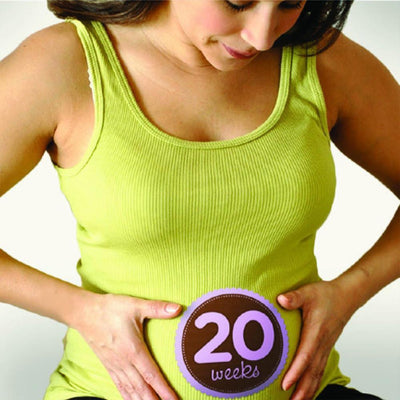 Sticky Bellies Maternity stickers: 12-40 Weeks