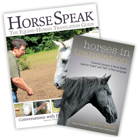 Horse Speak Set