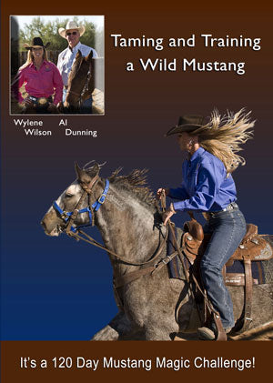Taming and Training a Wild Mustang DVD