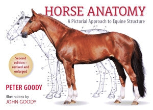 Horse Anatomy: Second Edition, A Pictorial Approach to Equine Structure by Peter Goody