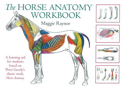 Horse Anatomy Workbook:  A learning aid for students based on Peter Goody's classic work, Horse Anatomy by Maggie Raynor