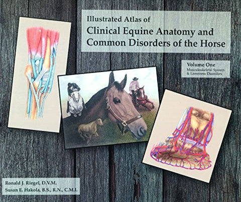 Illustrated Atlas of Clinical Anatomy and Common Disorders of the Horse, Vol 1