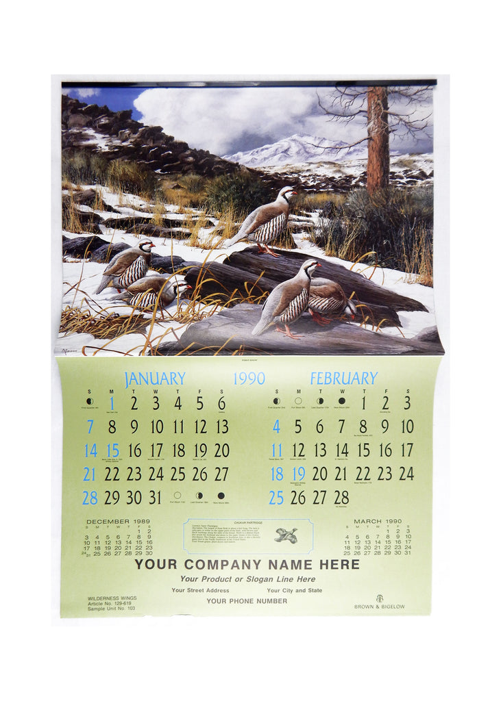 Vintage 1990 2018 David Maass Wilderness Wings Large Format Calendar
