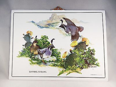 Vintage 1991 Fred Sweney Gambel's Quail Formcraft Vacuum Form Print