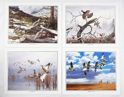 David Maass Wilderness Wings Print Portfolio 249