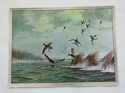 Vintage David Maass Out of the North Ducks Color Foil Etch Print