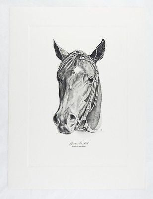 Vintage Tunell Spectacular Bid 1979 Kentucky Derby Winner Talio Chrome Print