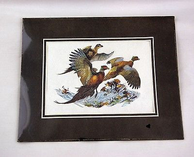 Vintage 1970's Fred Sweney Ring Necked Pheasants Color Foil Etch Matted Print 1