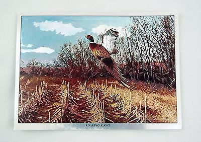 Vintage 1970's David Maass Roaring Aloft Pheasant Color Foil Etch Print