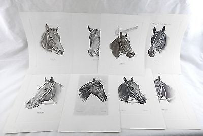 Vintage 1970's Kentucky Derby Winners 8 Print Set