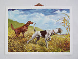 Vintage Stanford Fenelle Retriever and Pointer Formcraft Vacuum Form Print