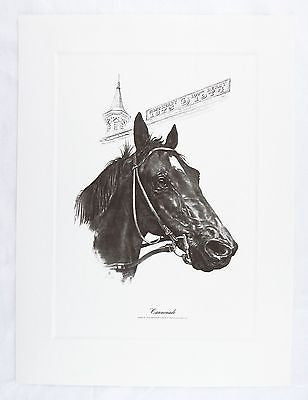 Vintage 1974 Fenelle Cannonade Kentucky Derby Winner Talio Chrome Print