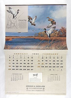 Vintage 1981 2026 David Maass Wilderness Wings Large Format Calendar
