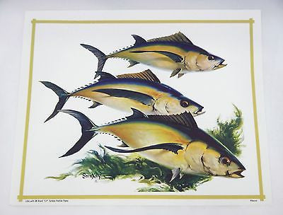 Vintage 1970's Fred Sweney Albacore Print