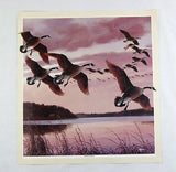 Vintage 1980's David Maass Homeward Formation Canadian Geese Print