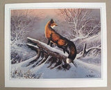 Vintage 1980's Ted Blaylock Red Fox Print