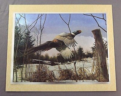 Vintage 1993 David Maass Heading For Shelter Pheasant Color Foil Etch Print