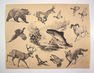 Vintage 1972 Fred Sweney Wildlife Print and Calendar 1
