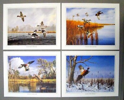 Vintage David Maass Wilderness Wings Print Portfolio 240-146 4 Print Set