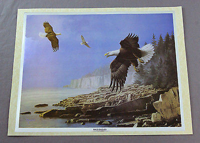 Vintage David Maass Bald Eagles Color Foil Etching Print