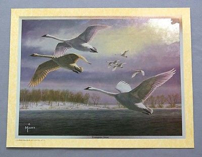Vintage 1994 David Maass Trumpeter Swan Color Foil Etch Print