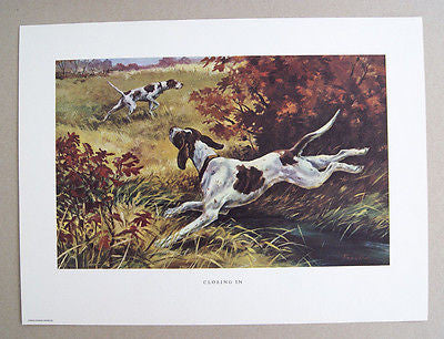 Vintage 1970's Stanford Fenelle Closing In Hunting Dogs Print