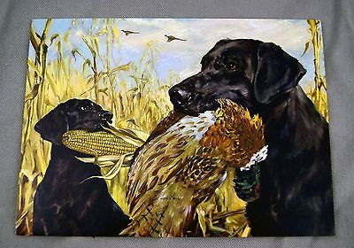 Vintage 1970's Stanford Fenelle How's This? Black Labrador Retriever Print