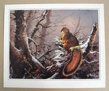Vintage 1985 Ted Blaylock Squirrel Print
