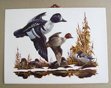 Vintage 1970's Fred Sweney Golden Eye Ducks Formcraft Vacuum Form Print