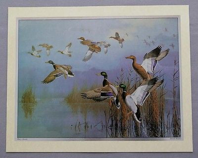 Vintage 1980's David Maass Hazy Ascent Color Foil Etch Print