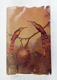 Vintage Martin Johnson Heade Brazilian Hummingbirds Playing Cards Set