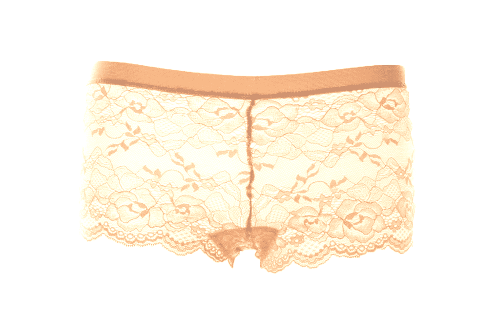 Sofra Guilded Roses Lace Boyshort - Tan, EVES