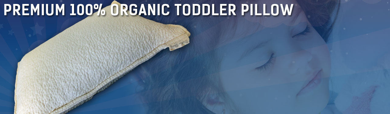 Premium 100% Organic Wool Toddler Pillow