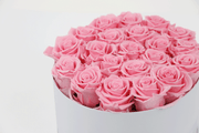 PINK DOZEN ROSES IN A GIFT HAT BOX