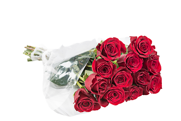 roses, flower, fresh cut flower, red roses, color roses, bouquetes, flower bouquest, dozen roses, dozen color roses