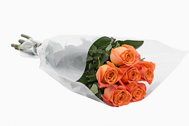 Valentine's day Assorted Half Dozen Roses - 15 Units per Box