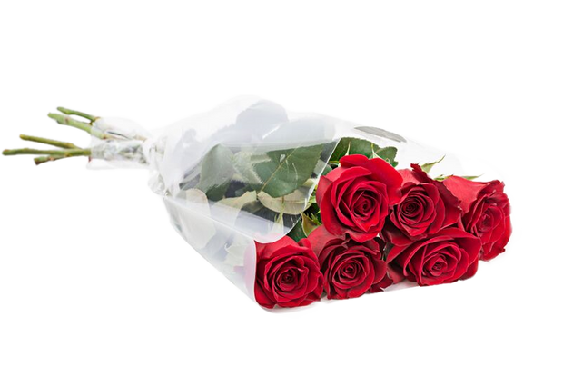 Traditional Half Dozen Roses