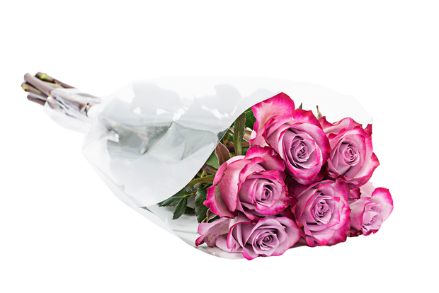 Easter roses, beautiful roses, best flowers, retail flower, wholesale flowers, Easter flowers, easter gifts, fresh cut flowers