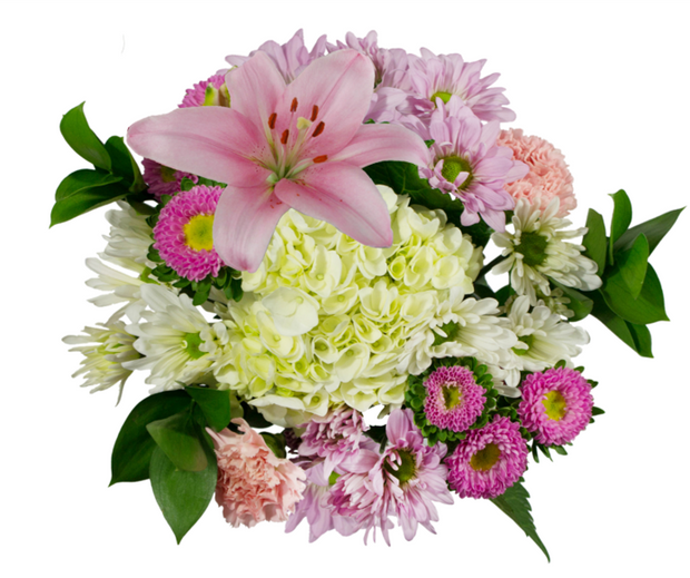 Lovely Bouquet - 12 Units per Box