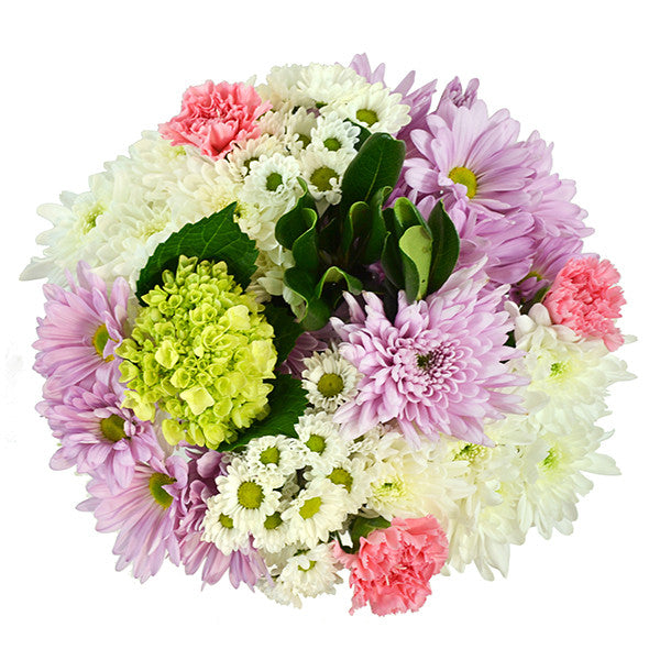 Fresh cut flowers, mother´s day, mothers day, mom flowers, flowers for mothers day, beautiful flowers, store flowers sellers, display flowers, wholesale prices, best prices, farm flowers, flower bouquets, dozen roses, color flowers, flowers for business