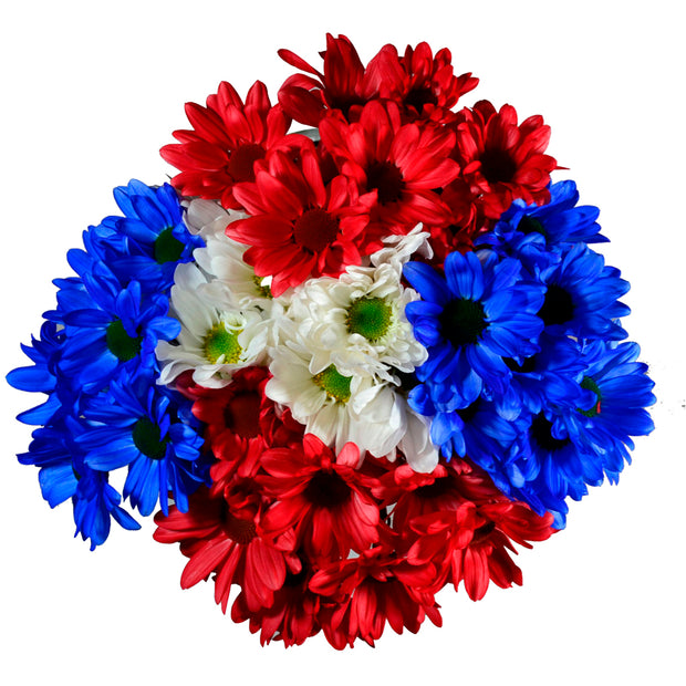 patriotic poms, flowers, memorial day, memorial day flowers, 4th of july flowers, independence day, independence day flowers, gifts, flowers red blue white flowers