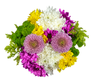 fresh cut flowers, flower farms, seasonal flower, bouquets, floral arrangements, beautiful flower, floral arrangement, flowers for retail shops, flower display, flower delivery, colombian flowers, farm flowers, flower bouquets, floral collection, floral arrangements