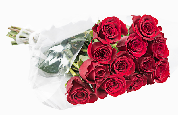 MOTHER'S DAY DOZEN ROSES 50% RED 50% COLOR 40CMS